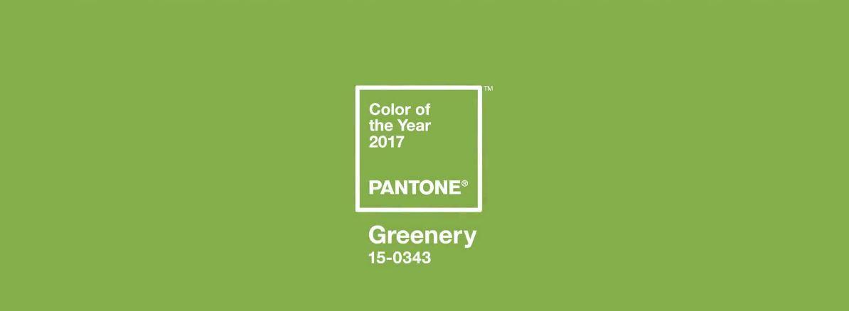 applaus applaus die farbe des jahres 2017 tannenhof oberweilbach. Black Bedroom Furniture Sets. Home Design Ideas